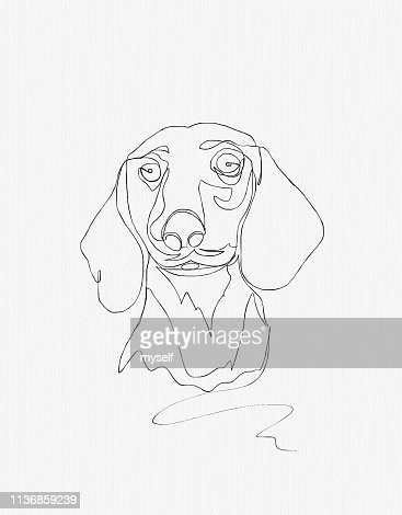 155 Outline Drawings Of Animals Photos And Premium High Res Pictures Getty Images