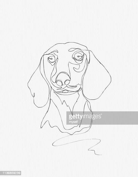 Illustration. Continuous line ink drawing. Dog dachshund on white background