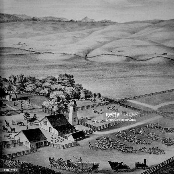 Illustration depicting an aerial view of a farm in Yolo County California including livestock and a mechanical tractor 1879