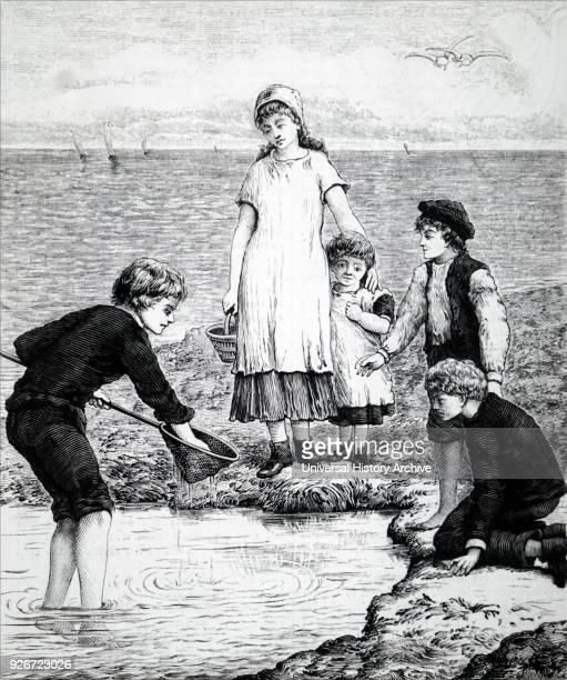 Illustration depicting children playing in rock pools Dated 19th century