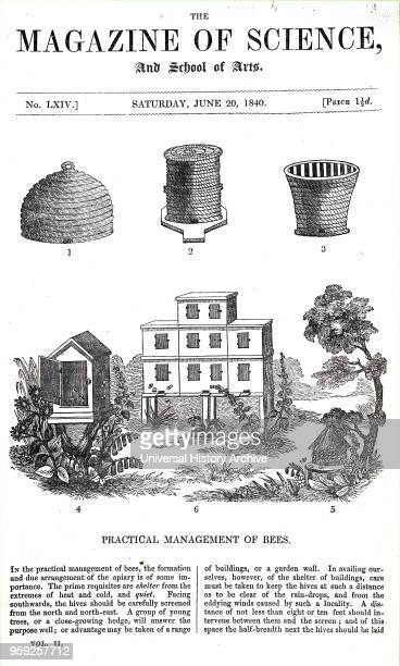 Illustration depicting various beehives 1 Bellshaped traditional straw skep 2 Wildman's storied straw beehives 3 Grecian or Candiote hive of straw...