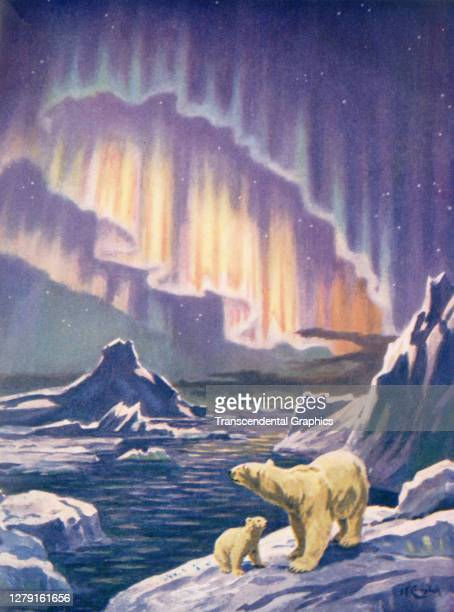 Illustration depicts a pair a polar bears on an ice floe under the Aurora Borealis, 1930.