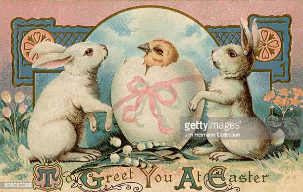 Illustration for 1911 Easter postcard featuring two rabbits with hatching chick