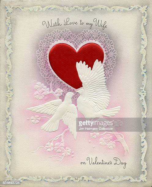 Illustration for a Valentine's Day card for wife featuring two birds perched on branch with heart in background