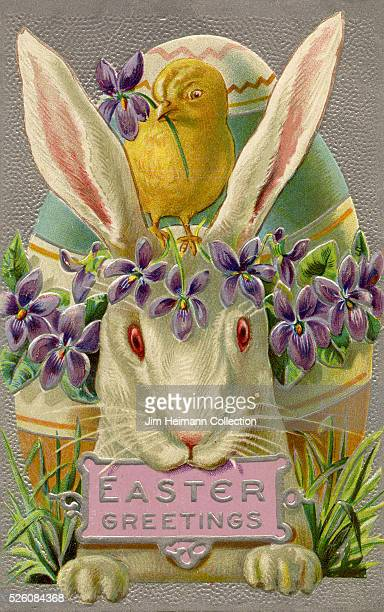 Illustration for Easter postcard featuring baby chicken standing on white rabbit's head Oversized egg behind them