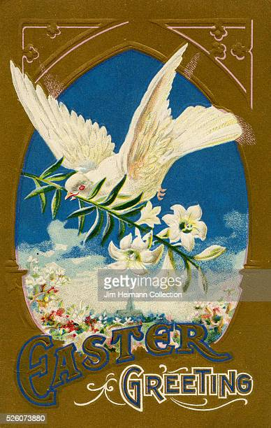 Illustration for Easter postcard featuring dove flying with branch of white lilies.
