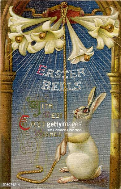Illustration for Easter postcard featuring white rabbit ringing Easter bells in the form of lilies