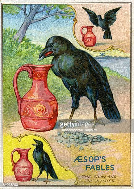 Illustration for one of Aesop's Fables The Crow and the Pitcher ca1880s It depicts the crow dropping rocks and stones into the pitcher to raise the...