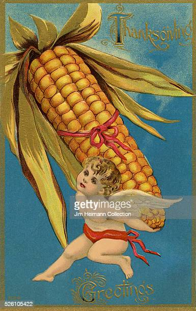 Illustration for Thanksgiving postcard featuring young angel carrying oversized corn cob