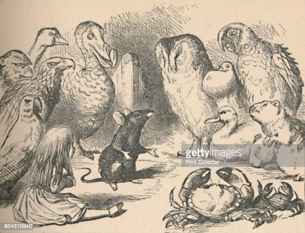 Illustration for the chapter a CaucusRace and a long tail Alice and various creatures such as a crab owl parrot duck and mouse 1889 Lewis Carrolls...