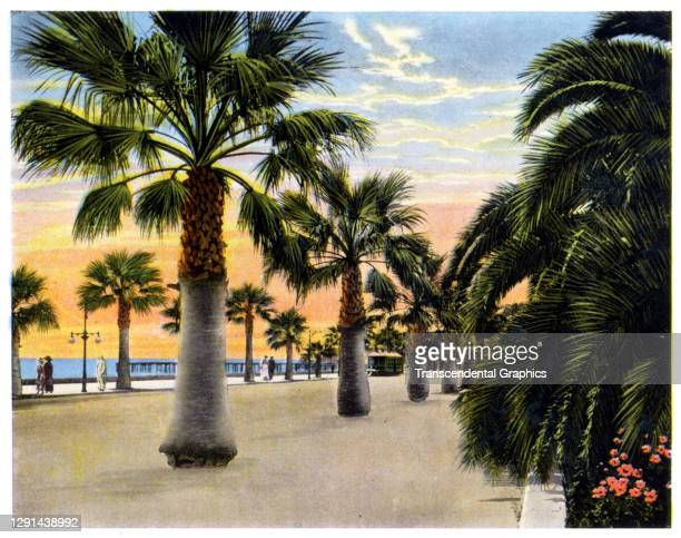 Illustration, from a souvenir album of Southern California scenes, shows a view along Seaside Boulevard, California, 1907.