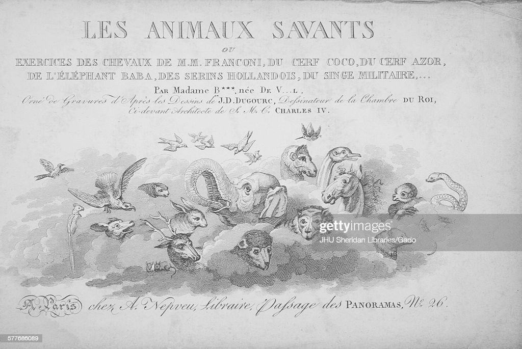 Illustration from Les Animaux Savants, published by the