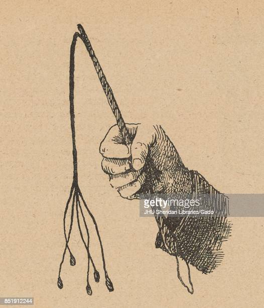 Illustration from the Russian satirical journal Ovod depicting a hand holding a whip with five lashes a modified version of the cato'ninetails 1906
