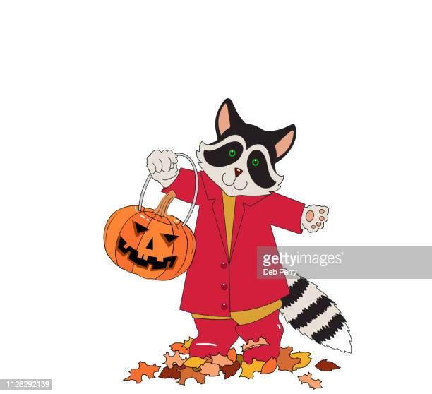 Illustration of a cute raccoon holding a jack-o-lantern on a white background