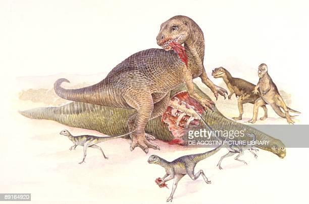 Illustration of Allosaurus eating dead Camarasaurus
