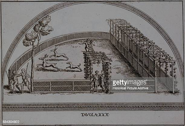 Illustration of an Enclosure for Stag Hunting by Pietro Santo Bartoli