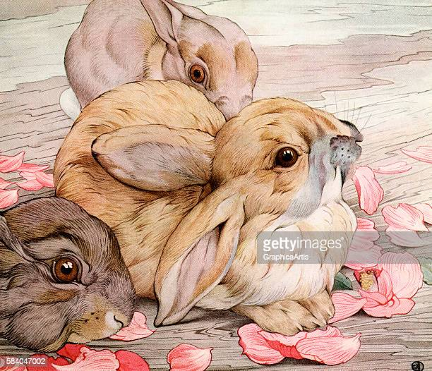 Illustration of baby rabbits 1915 Screen print