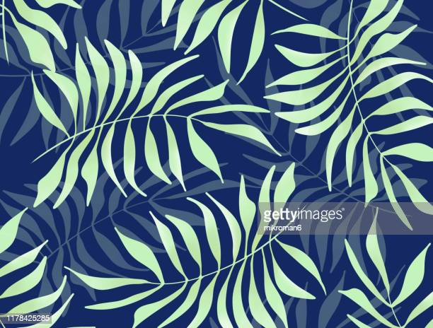 illustration of branches of tree, background idea - branch stock pictures, royalty-free photos & images