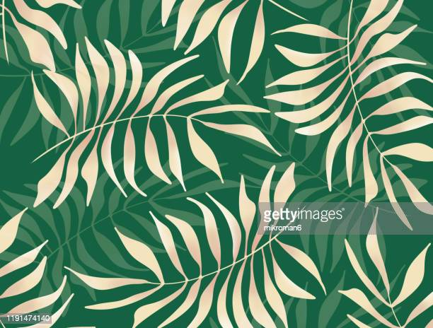 illustration of branches of tree tropical background - graphic t shirt stock pictures, royalty-free photos & images