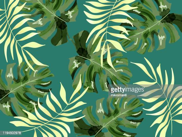 illustration of branches of tree tropical background - graphic print stock pictures, royalty-free photos & images