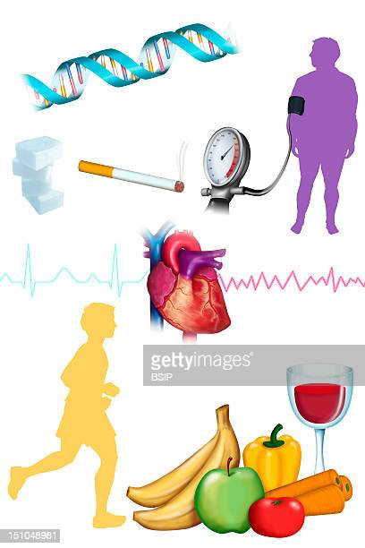 Illustration Of Cardiovascular Risk Factors On The Top Obese Man High Blood Pressure Tobacco Too Sweet Diet Or Diabetes Heredity High Risk Of...