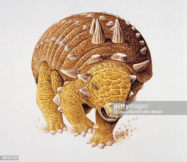 Illustration of Euoplocephalus