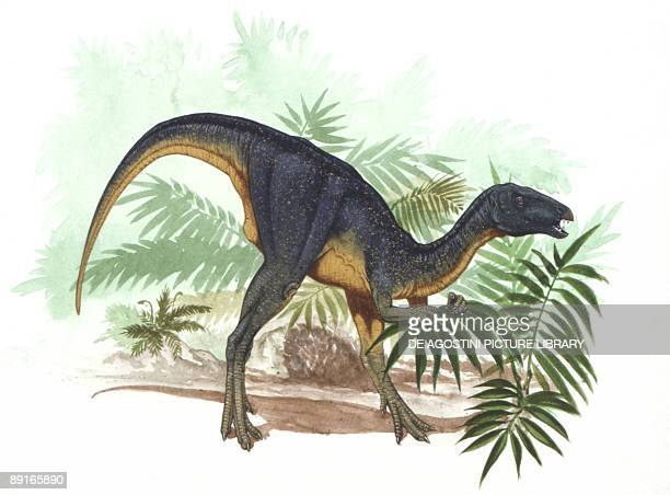 Illustration of Geranosaurus