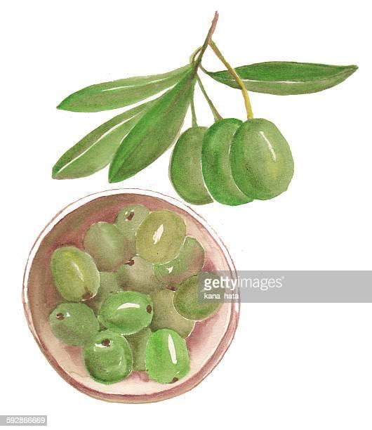 Illustration of green olives