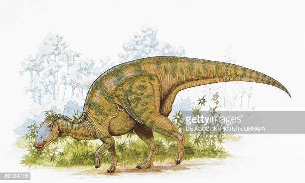 illustration of hadrosaurus