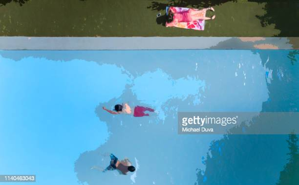 illustration of high angle view of swimming pool and swimming and sunbathing - digital enhancement stock pictures, royalty-free photos & images