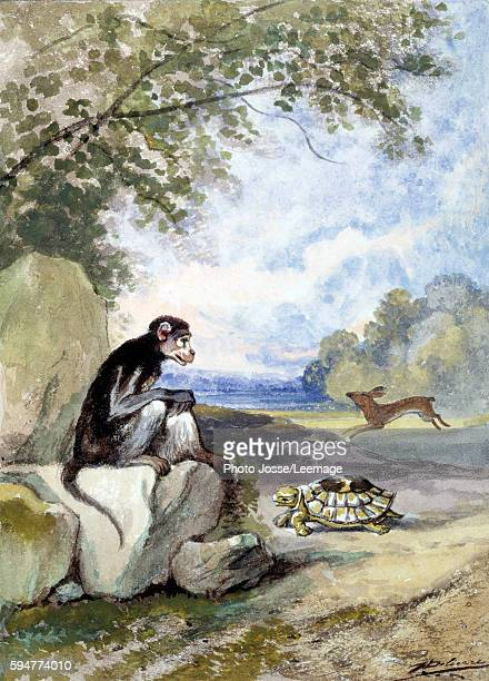 "Illustration of La Fontaine's Fable ""The tortoise and the hare"" by Jean de La Fontaine. Watercolour by Auguste Delierre , 19th century. Musee La..."