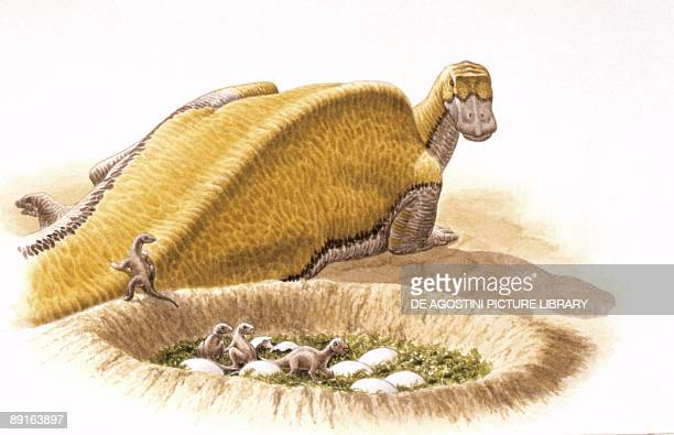 Illustration of Maiasaura newborns in nest