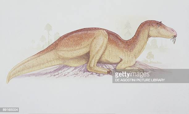 Illustration of Maiasaura