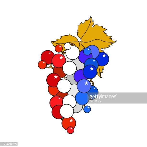 Illustration of patriotic grapes