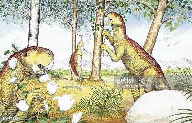 Illustration of Psittacosaurus