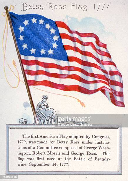 Illustration of the Betsy Ross flag of 1777 from a Chase Sanborn Tea and Coffee Importers promotional pamphlet 1912 Beneath the full color...