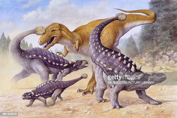 Illustration of three Ankylosaurus fighting with Albertosaurus