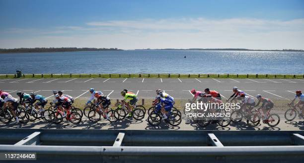 Illustration picture shows the pack of riders in action along the Schelde river during the 107th edition of the 'Scheldeprijs' one day cycling race...