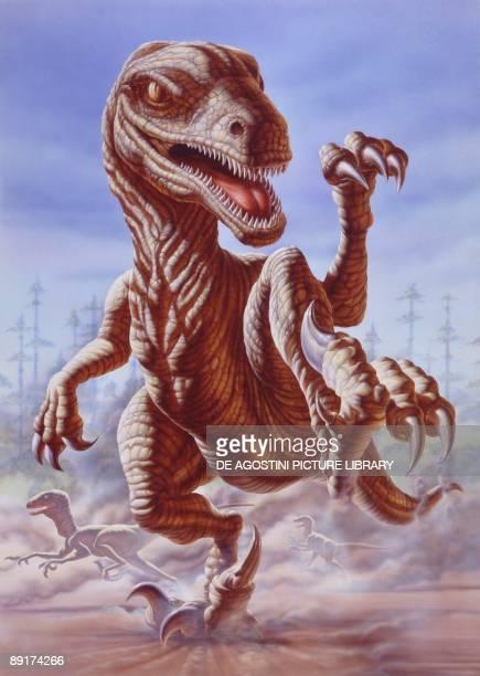 Illustration representing Deinonychus