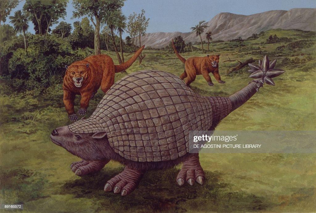 Illustration representing Doedicurus clavicaudatus : News Photo