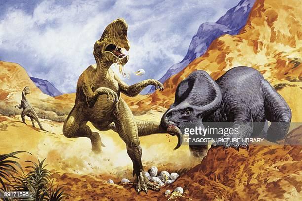Illustration representing Oviraptor and Protoceratops fighting