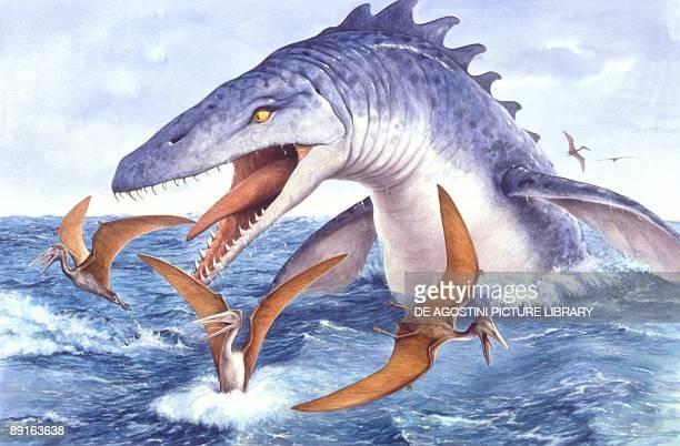 Illustration representing Tylosaurus in sea