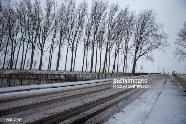 Illustration shows a snowy winter landscape in Damme, in Flanders, Saturday 16 January 2021. BELGA PHOTO NICOLAS MAETERLINCK