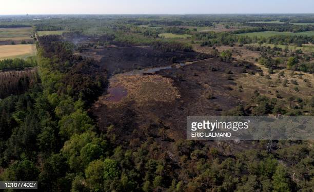 Illustration shows an aerial view of damage after an important fire in the natural reserve domain 'De Liereman' in Oud-Turnhout, Antwerp province,...