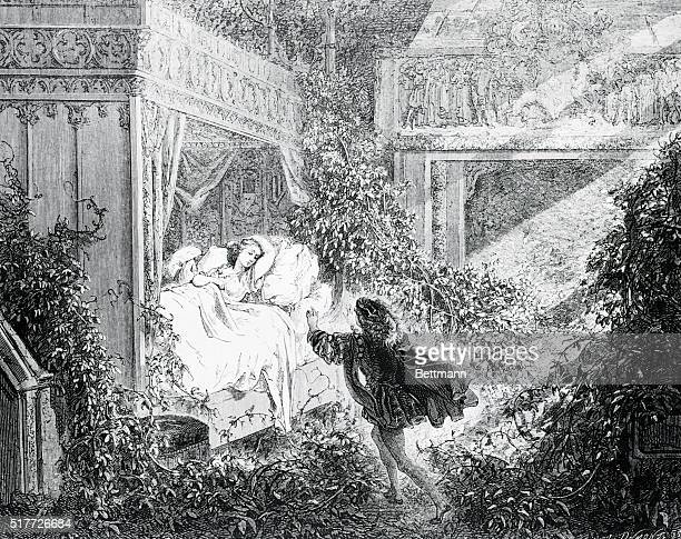 Illustration to 'Sleeping Beauty' Undated engraving by Gustave Dore BPA2# 1113