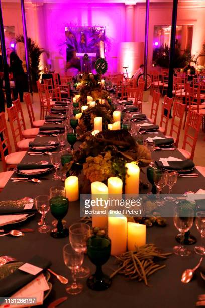 Illustration view during the Fondation Prince Albert II De Monaco Evening at Salle Gaveau on February 21 2019 in Paris France