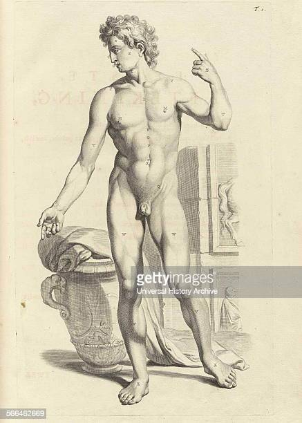 Illustrations by Govard Bidloo from the anatomy textbook 'Ontleding des menschelyken Lichaams' Govard Bidloo was born in Amsterdam in 1649 and became...