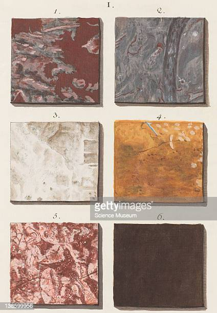 Illustrations of Marble Patterns from Adam Wirsing's 'Marmora et Adfines Aliquos Lapides' Section II Plate I