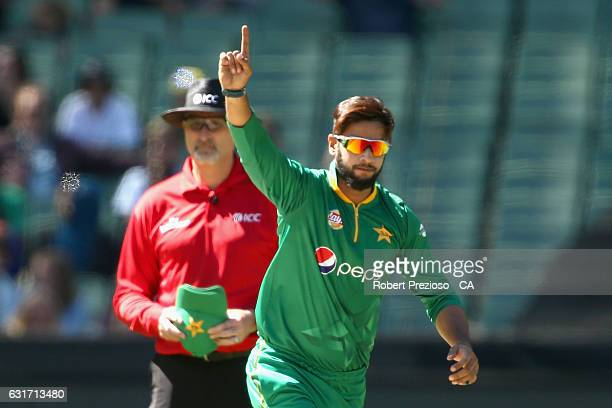 Imad Wasim of Pakistan celebrates the wicket of Glenn Maxwell of Australia during game two of the One Day International series between Australia and...