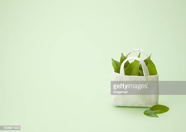 Image of eco bag